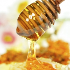 Chaste Honey Supplier
